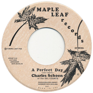 A Perfect Day - Charles Schoen