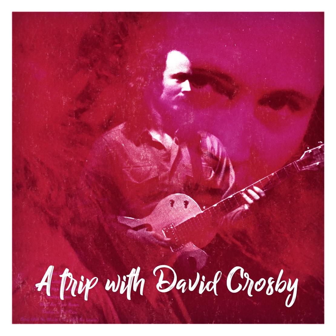 A Trip With David Crosby